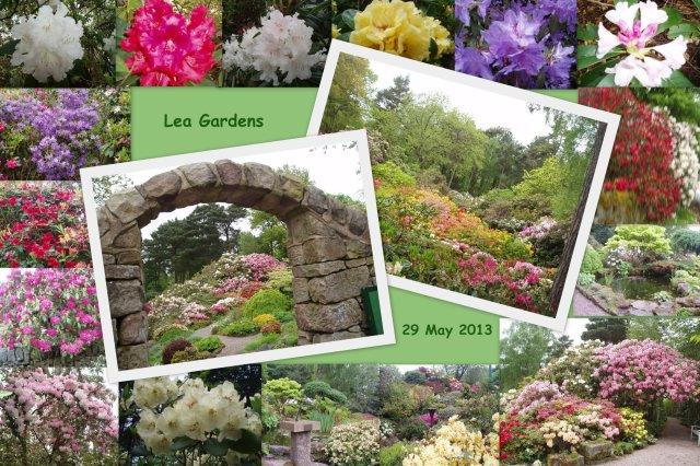 Lea Gardens_small