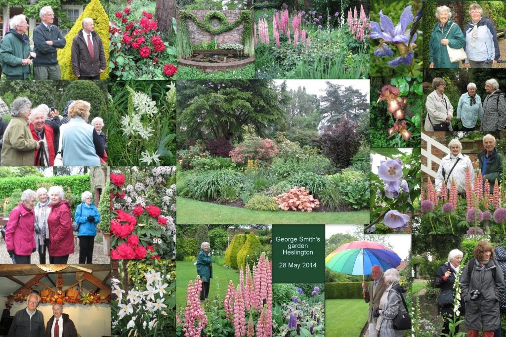 George Smith's garden1
