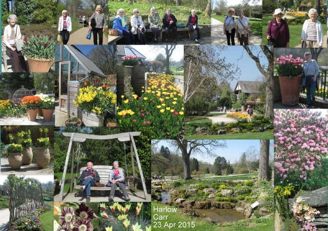 Collage - Harlow Carr_small
