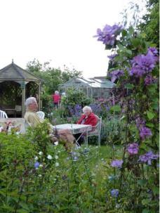 Evening garden visit 2